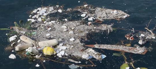 Il Parlamento Europeo ha dichiarato guerra alla plastica che soffoca i mari